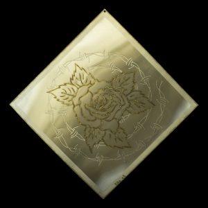 Rose Stacheldraht 8 55/55