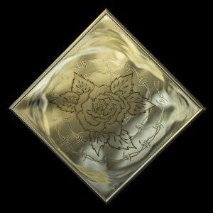 Rose Stacheldraht 9 64/64